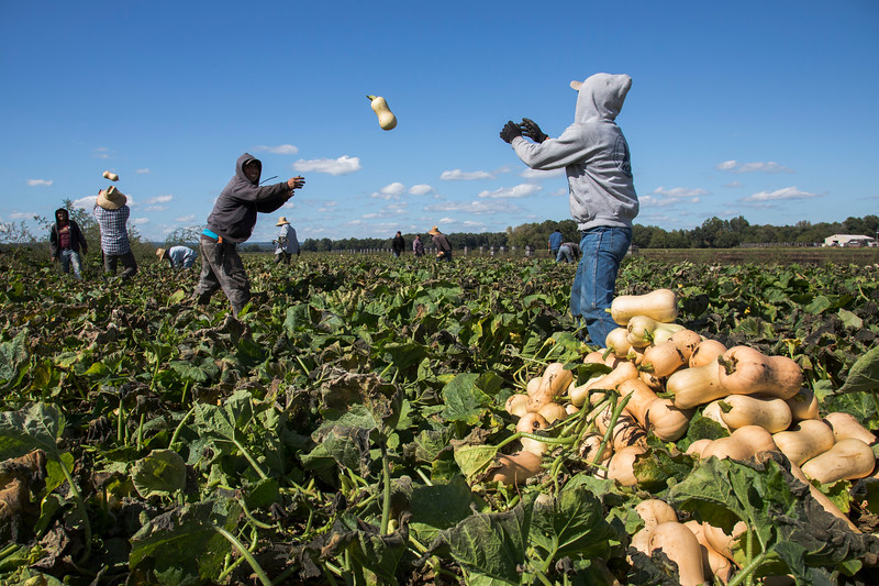erbmigrantworkers03