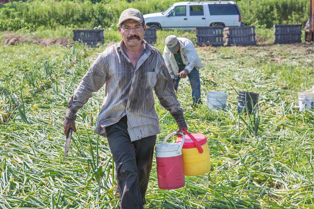 erbfarmworker01