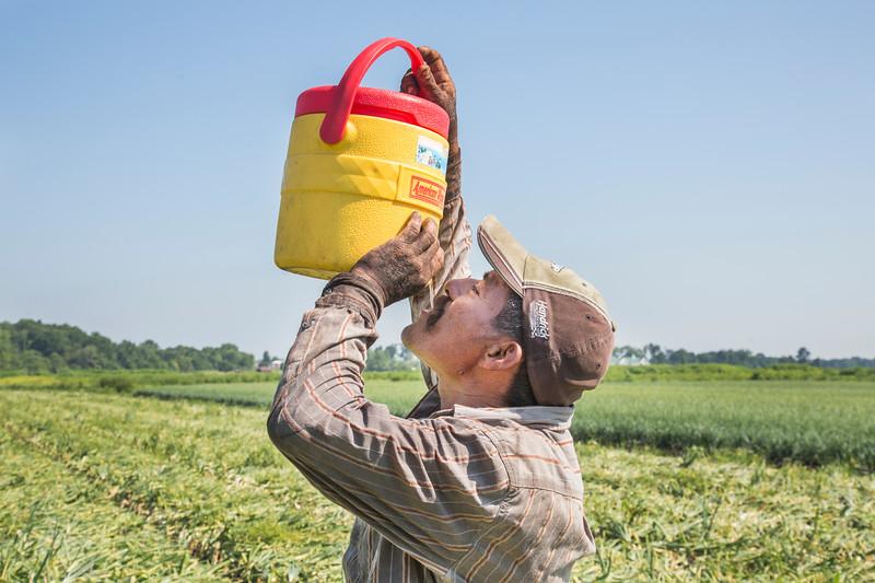 erbfarmworker02
