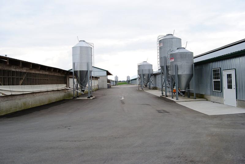 farm_1631