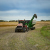 LeBlanc-Combining Soy Beans-6478