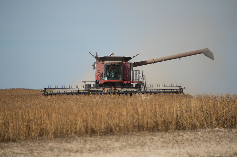 LeBlanc-Combining Soy Beans-6637