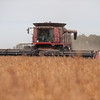 LeBlanc-Combining Soy Beans-6422