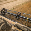 LeBlanc-Combining Soy Beans-6497