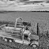 LeBlanc-Corn Silage Aerial-8831-Edit