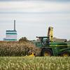 LeBlanc-Corn Silage-6229