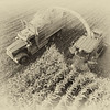 LeBlanc-Corn Silage Aerial-8847-Edit