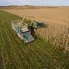 LeBlanc-Corn Silage Aerial-8835