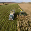 LeBlanc-Corn Silage Aerial-8838