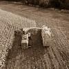 LeBlanc-Corn Silage Aerial-8859-2