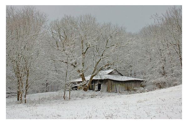 Winter scenes 2006