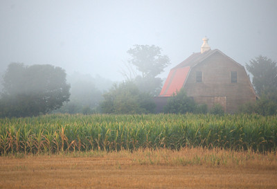 Foggy Barn X