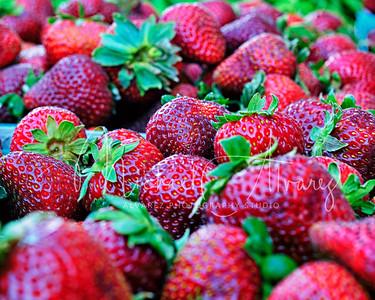 0526_FarmersMarket_6614
