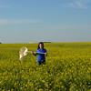 Farmer checks canola field with sweepnet