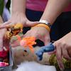 Finger puppets. Fiber Twist, 9/16/12.