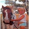 Horse at Yeronga Goombi & Craig Harris