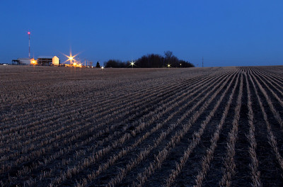 Harvested Field of Grain at Dusk
