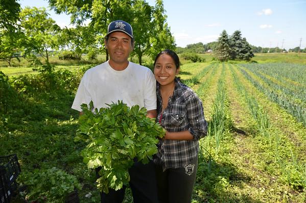 Gonzales Farm Goshen, NY  Claudio Gonzales & Alexandra Gonzales