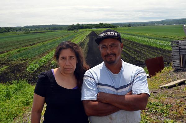 Mimomex Farm Goshen, NY