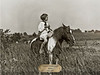 Pinto Pony with Brass Plate 24x18 #2