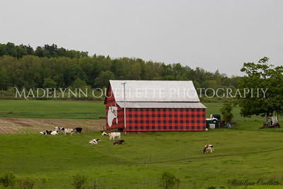 Plaid Barn 1