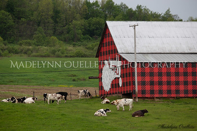 Plaid Barn 2