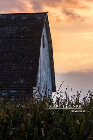 Barn Near Sunset in Boone County, Iowa