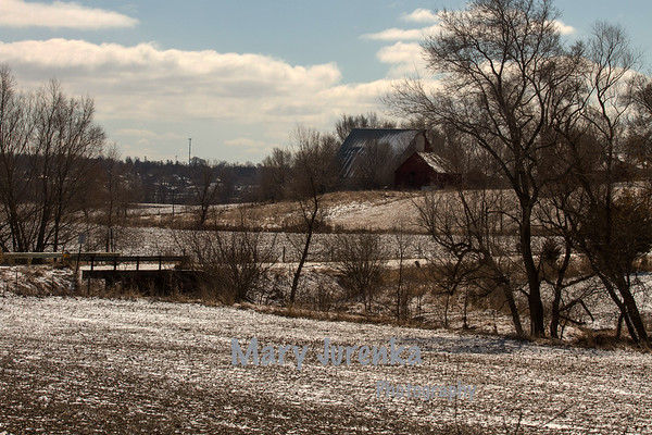 Winter fields in Tama County