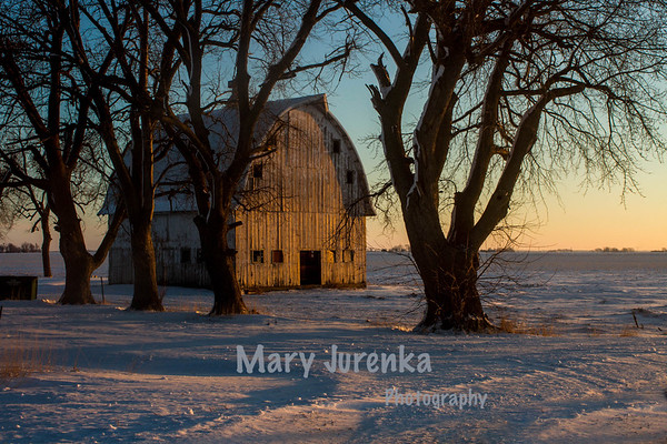 Soft Winter Light on Iowa Barn
