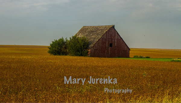 Old Barn near Ogden in Boone County, Iowa