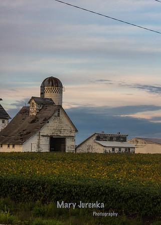 Scenic Farms Near Ames, Iowa