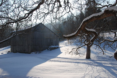 Lori's Barn in Snow