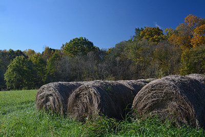 October Hay Bales