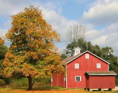 Old Barn In Cuyahoga National Park