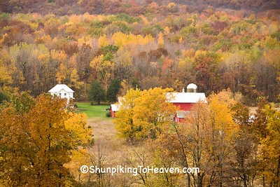 Autumn Scene with Farm in the Valley, Richland County, Wisconsin