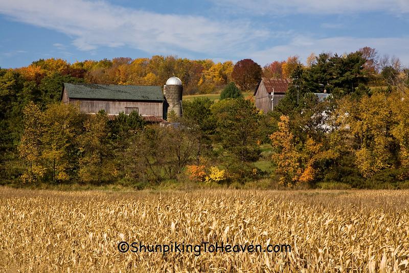 Atuumn Farm Scene, Sauk County, Wisconsin