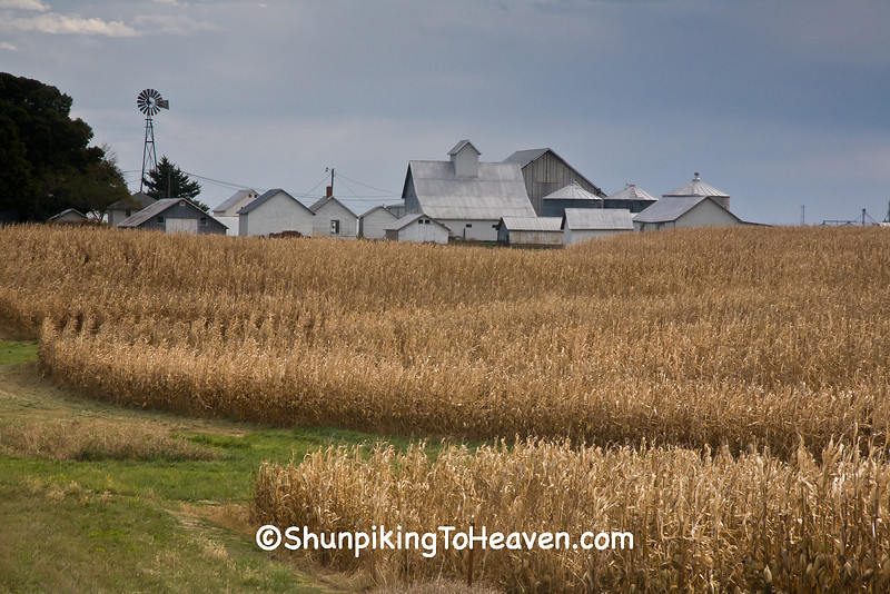 Autumn Farm Scene, Henry County, Iowa