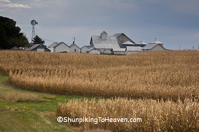 Autumn Farm Scene, Henry County, Iowa