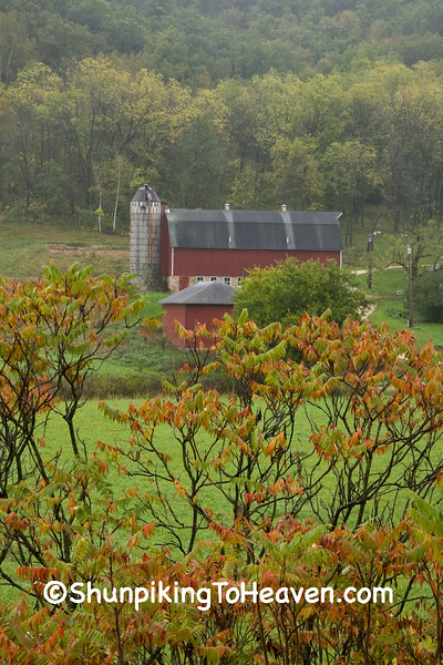 Red Farm Scene with Orange Sumac, Winona County, Minnesota