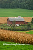 Farm in the Valley with Corn and Alfalfa, Pepin County, Wisconsin