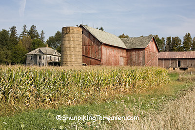 Farm with Abandoned Farmhouse, Clayton County, Iowa
