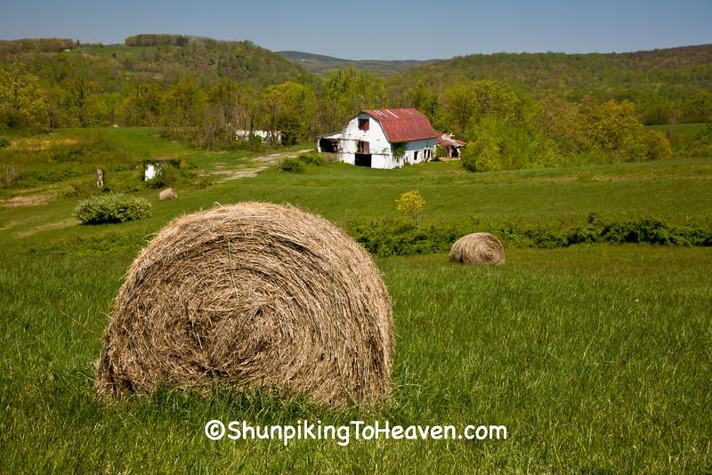 Farm in the Mountains, Meadows of Dan, Virginia