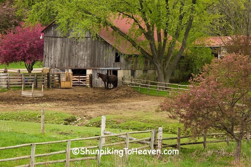 Spring Farm Scene, Richland County, Wisconsin