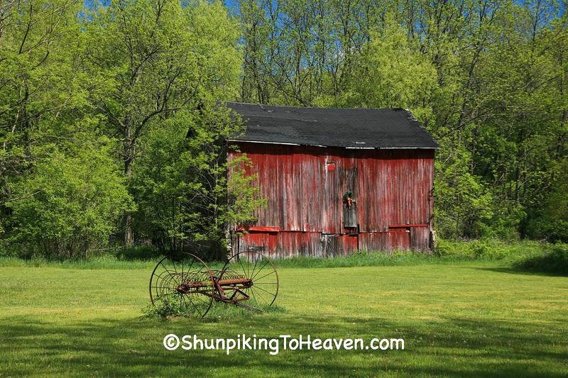 Tower Farm, Kent County, Michigan