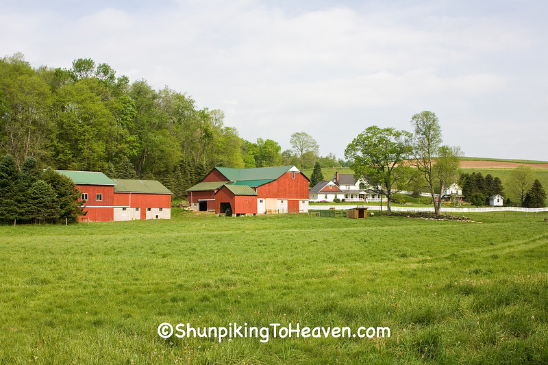 Mennonite Farm, Coshocton County, Ohio