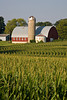 Summer Farm Scene, Rock County, Wisconsin