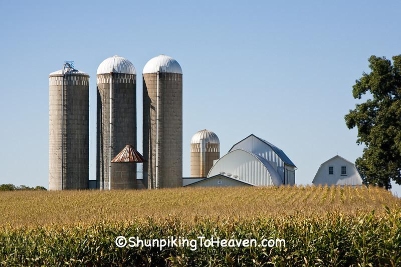 Farm Scene, Monroe County, Wisconsin