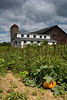 """Approaching Storm"", Farm with Chicken Coop and Garden, Rock County, Wisconsin"