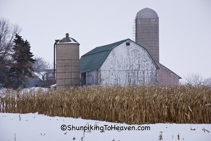 Winter Farm Scene with Standing Corn, Dane County, Wisconsin