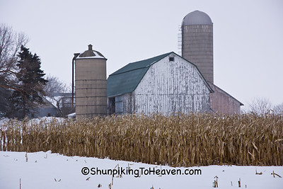 Winter Farm Scene with Standing Corn, Dane County, Wisconsin